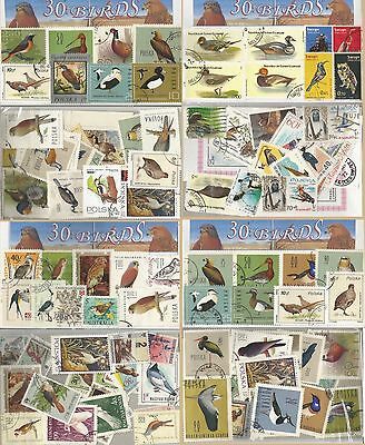 Charity Stamp Packet Birds 30 Used Stamps 0291
