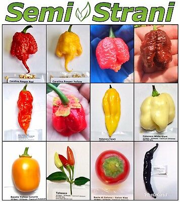 120 SEMI PEPERONCINO COLL 1: CAROLINA REAPER RED e YELLOW, SEPIA SERPENT, etc