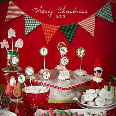New Xmas 12 Flags Cotton Bunting Pennant Flags Party Banner Christmas Decor B