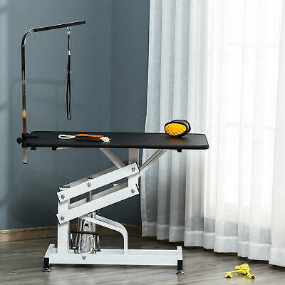 Deluxe Professional Z - Lift Hydraulic Pet Dog Grooming Table with Arm
