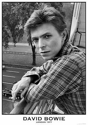 """David Bowie NEW A1 Size 84.1cm x 59.4cm - approx 33"""" x 24"""" Poster"""