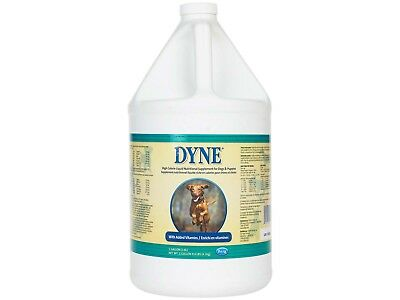 Dyne High Calorie Syrup Gallon High Calorie Dietary Supplement for Dogs & Pups