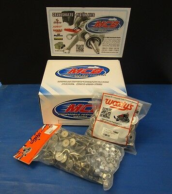 """WOODY'S 96 PACK SIGNATURE SERIES STAINLESS STUDS 1.325"""" w 1/2 NUTS W/ BACKERS"""
