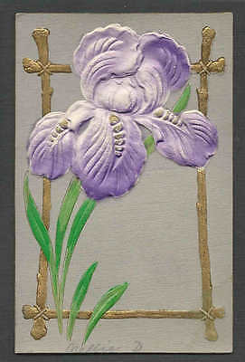 Ca 1910 PPC* VINTAGE IRIS IN GOLD FRAME HEAVILY EMBOSSED MINT