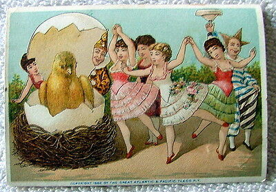 1882 THE GREAT ATLANTIC & PACIFIC TEA CO TRADE CARD BIRD CHICKEN HATCHING EGG #x