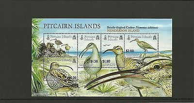 Pitcairn Islands- Sgms699  Curlew  Minisheet  Mnh