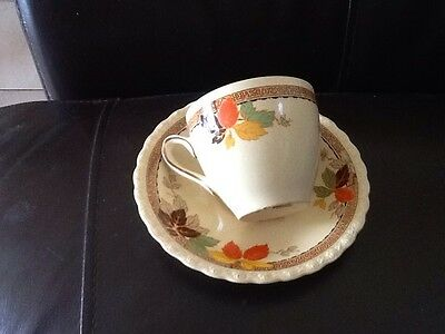 Vintage Myott Staffordshire England Cup And Saucer Autumn Tones