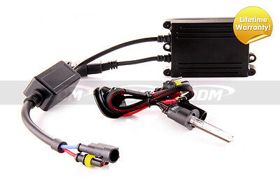 DDM HID XENON Conversion Kit Dual Relay Harness Dual In Dual ... Ddm Hid Relay Wiring Diagram on