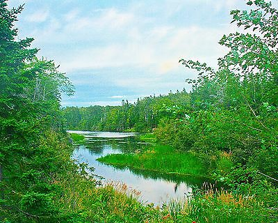 Graham's Pond, Pictou, Nova Scotia, 8x10 photograph
