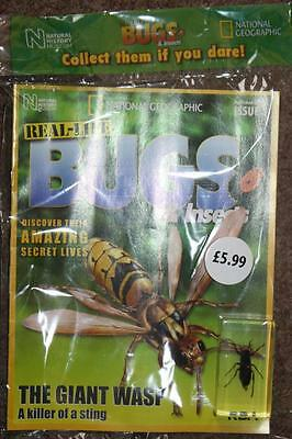 National Geographic Real Life Bugs & Insects #5 Revista en Inglés Avispa Gigante