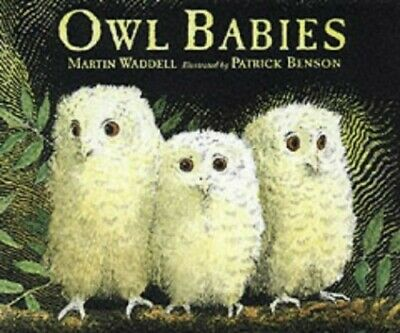 Owl Babies (Little Favourites), Waddell, Martin Hardback Book The Cheap Fast