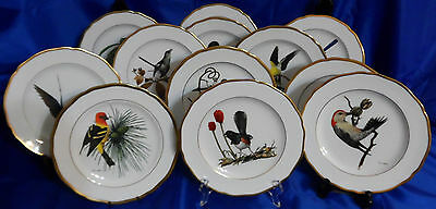 Spode Collector Plates Set Of 12 Limited Edition American Songbird Series