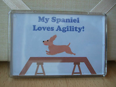 My Spaniel Loves Agility! Fridge Magnet Desk Picture Dog Puppy Cocker Blue Walk