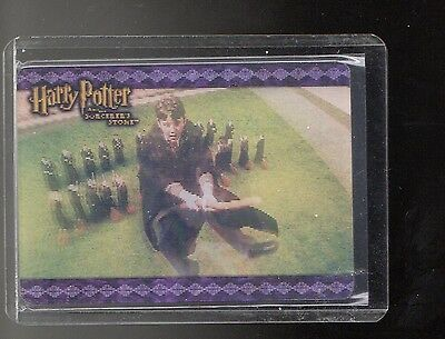 Harry Potter The Sorcerers Stone Case Topper  card