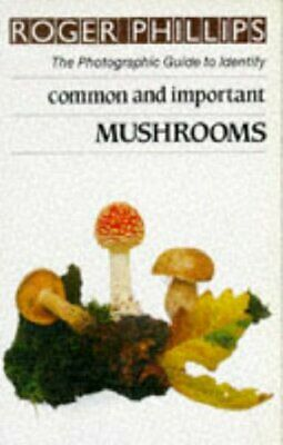 Common And Important Mushrooms (The photographic... by Phillips, Roger Paperback