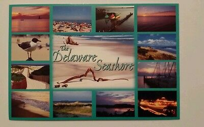 13 mini views from the Delaware Seashore - postcard