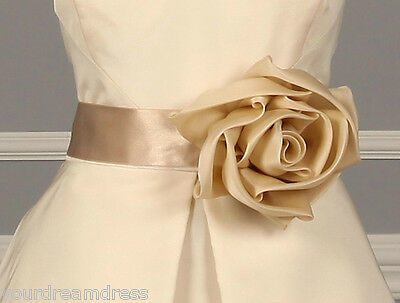 AUTHENTIC Monique Lhuillier Ophelia 40017 NEW Embellished Sash RETURN POLICY