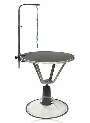 Go Pet Club Hydraulic Dog Grooming Table with Arm