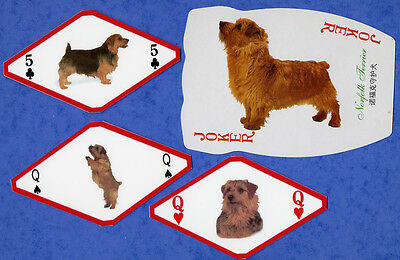 Norfolk Terrier Dog Playing Swap Single Cards Great Gift When framed
