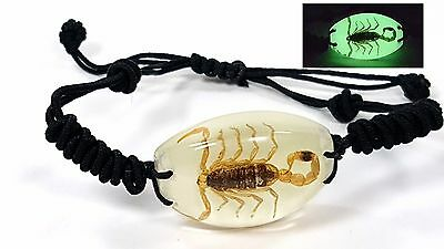 Brown Scorpion Bracelet Glow In The Dark Adjust Chic Jewelry Goth Fantasy Yl1401
