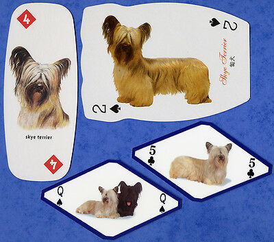 Skye Terrier Dog Selection Playing Swap Single Cards Great Gift When Framed