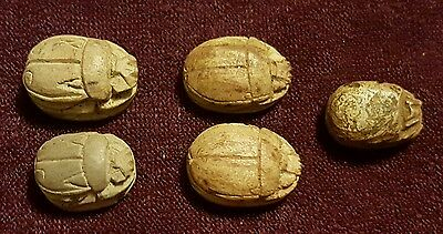 ANCIENT EGYPT carved SCARAB bead