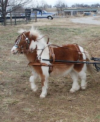 New extra heavy duty RUSSET leather mini miniature horse drawn driving harness