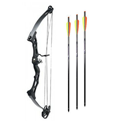 "Smk Twin Limb Adults Compound Bow 65Lb Draw Weight  Draw Length 24-29"" Archery"