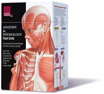 Anatomy and Physiology Flash Cards : Exploring How Our Bodies Work and Function