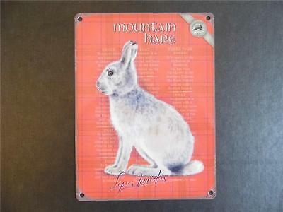 Vintage Style Good Quality Interior Design Wall Sign Metal Plaque Mountail Hare