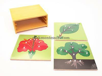 Pinkmontessori Sensorial Material - Botany Puzzles and Cabinet