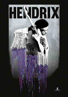 JIMI HENDRIX - LIVE WITH GUITAR - FABRIC POSTER - 30x40 WALL HANGING 52178