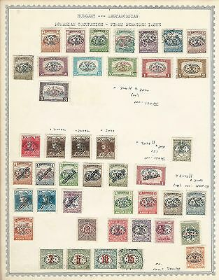 Hungary Occupation Collection 1919 on 5 Album Pages, SCV $886