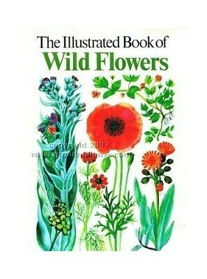 The Illustrated Book of Wild Flowers by Gregory, Mary Hardback Book The Cheap