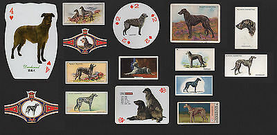 15  Original Deerhound Collectable Dog Cigarette Cards Trade Cards And Bands