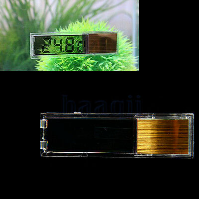 LCD Poisson Reptile aquarium de Temp thermomètre Marine Température Or BA