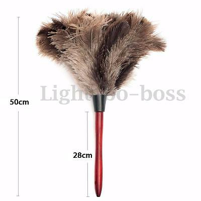 55cm Ostrich Bird Feather Duster Brush Wood Handle Anti-static Natural Grey Fur