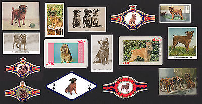 15  Original Brussels Griffon Collectable Dog Cigarette / Trade Cards And Bands