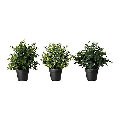 ikea artificial potted plant, herbs, assorted species plants fejka