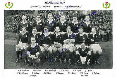 "SCOTLAND 1937 (v Wales) 12"" x 8"" RUGBY TEAM PHOTO PLAYERS NAMED"