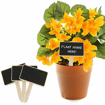 Mini Wooden Herb Plant Pot Blackboard Garden Kitchen Seed Flower Labels Tags NEW