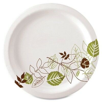 Dixie Paper Plate Set of 500