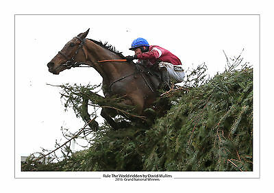 Grand National 2016 Rule The World David Mullins Horse Racing A4 Photo Aintree 2