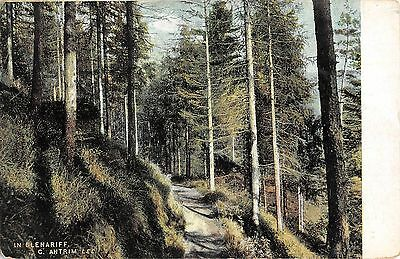 Northern Ireland Postcard In Glenariff Co Antrim  J0 071