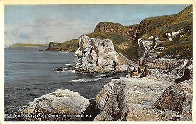 Northern Ireland Postcard Giants Head White Rocks Portrush  J0 060
