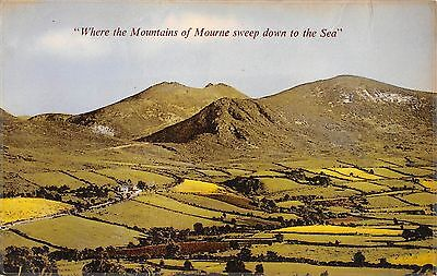 Northern Ireland Postcard Mountains Of Mourne Sweep Down To The Sea  J0 053