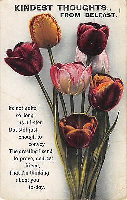 Northern Ireland Postcard Belfast Kindest Thoughts From Belfast Tulips  H0 031