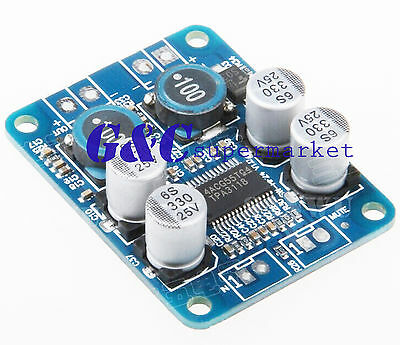DC 12V-24V TPA3118 BTL 60W Mono Digital Audio Power Amplifier Board Amp Module
