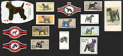 15  Original Kerry Blue Terrier Collectable Dog Cigarette Trade Cards And Bands
