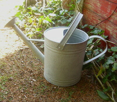 Garden Watering Can Metal Zinc Vintage Country House Style 3 Liter Ornament